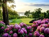 totr-rhododendrum-at-sunset-3